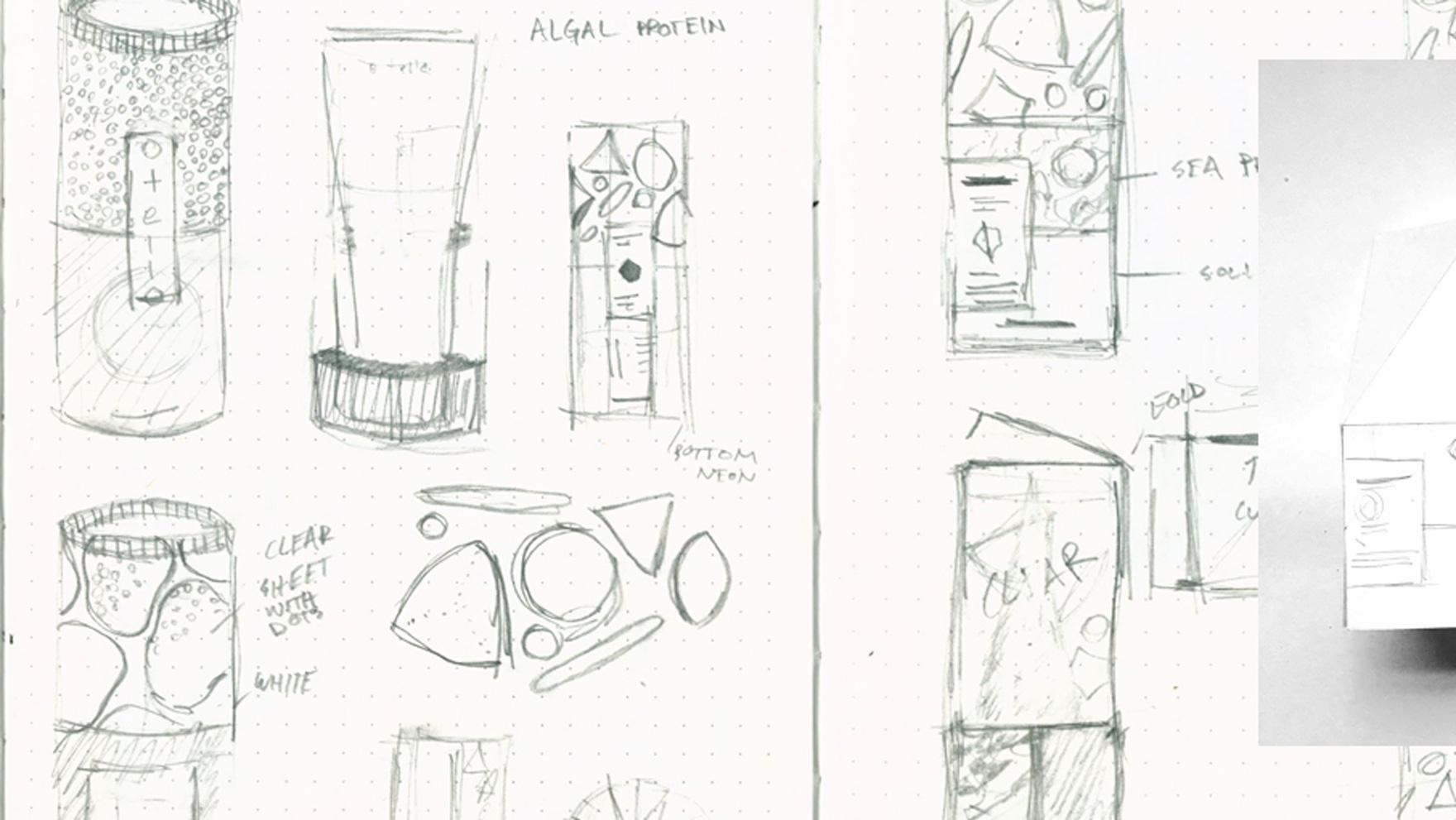 otella_sketches